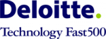 awards deloitte logo