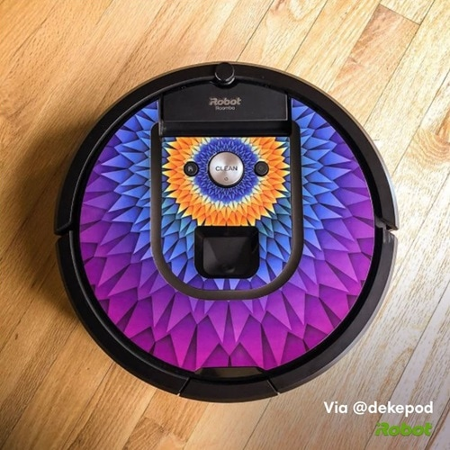 roomba with skinit skin